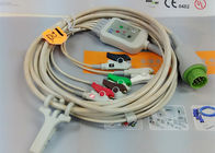 China 5 Leads Snap AHA ECG Patient Cable , Mindray 12 Pin One Piece ECG Cable factory