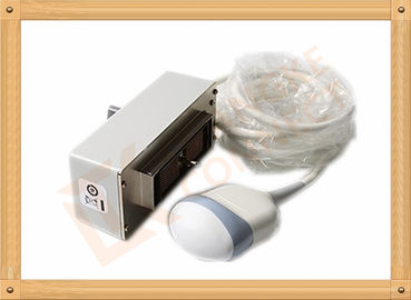 China Gray RAB4-8L 4D Medical Ultrasound Transducer / Ge Ultrasonic Transducer distributor